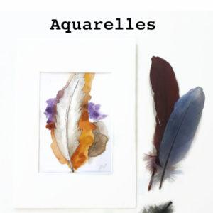 aquarelles plumes